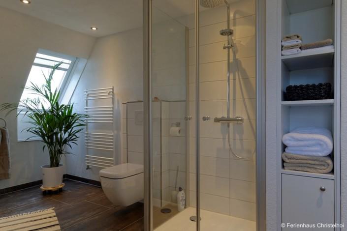 Badezimmer im OG mit Dusche, Wanne, Toilette und Waschbecken