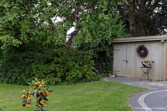 Rhododendren unter alten Bäumen