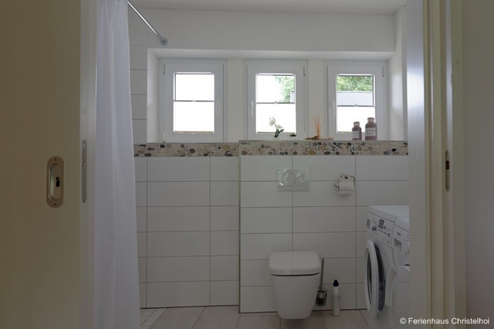 Wheelchair accessible bathroom on the ground floor - access through wide sliding door